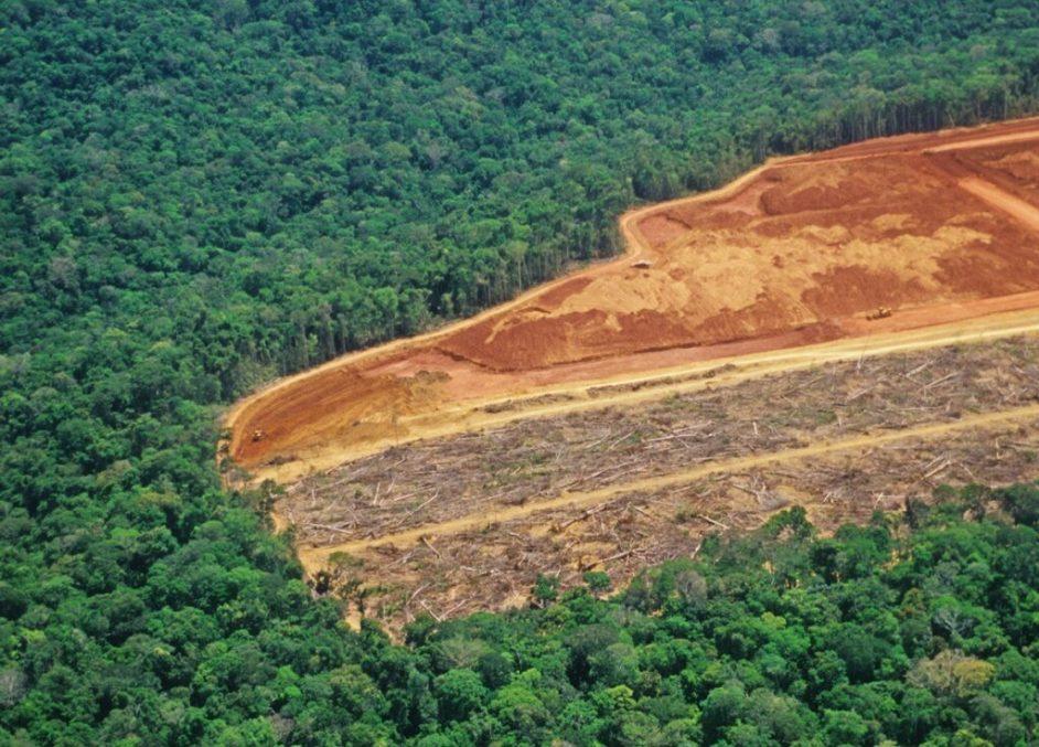 vista aerea de la selva amazonica, con un area desforestada. se ven troncos cortados y en otra parte solo la tierra roja