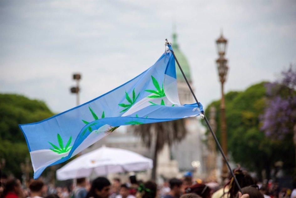 un manifestante callejero con la bandera argentina al viento. tiene dibujadas varias plantas de marihuana.